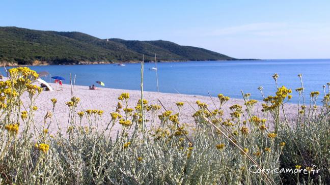 La plage de Cupabia - Serra di Ferro