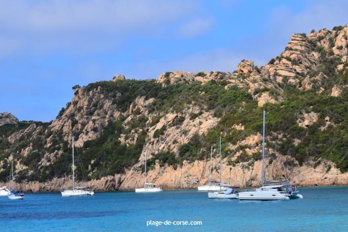 Catamaran à Roccapina