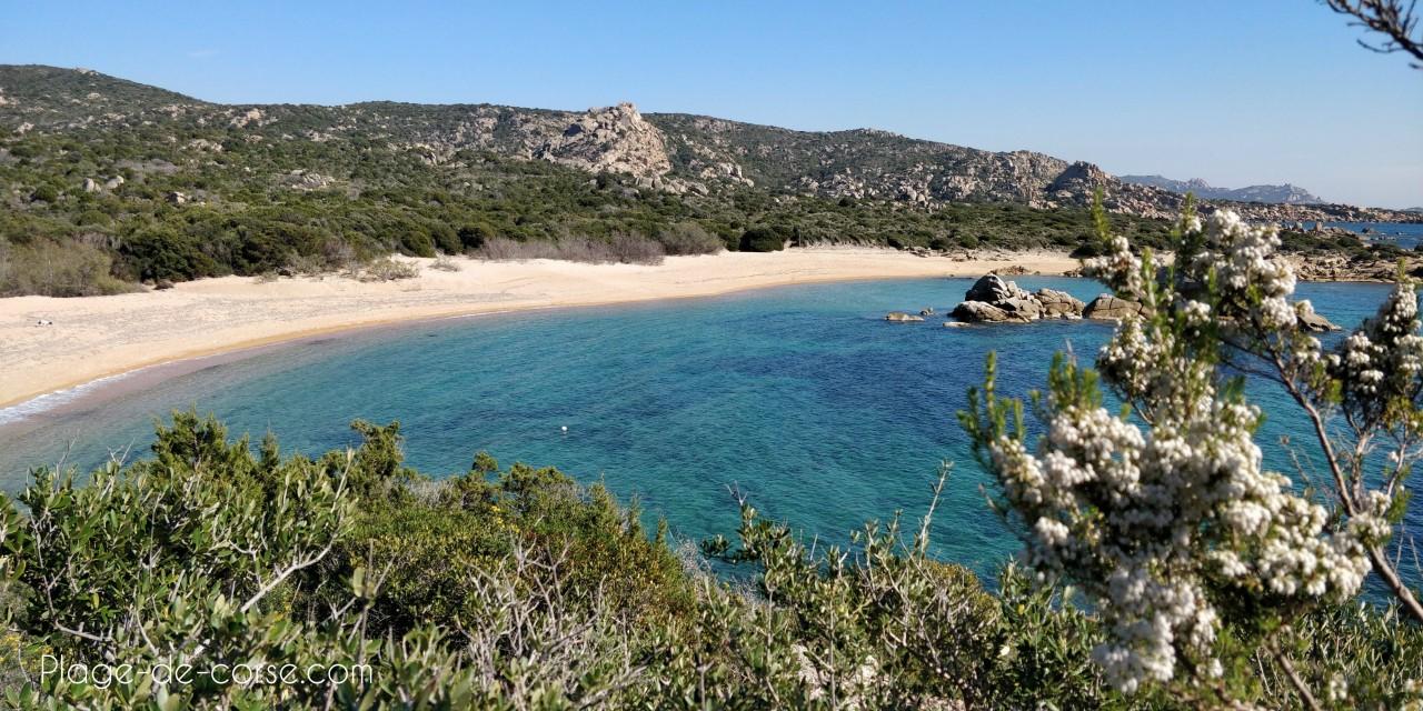 Les plages sauvages du Sud de la Corse