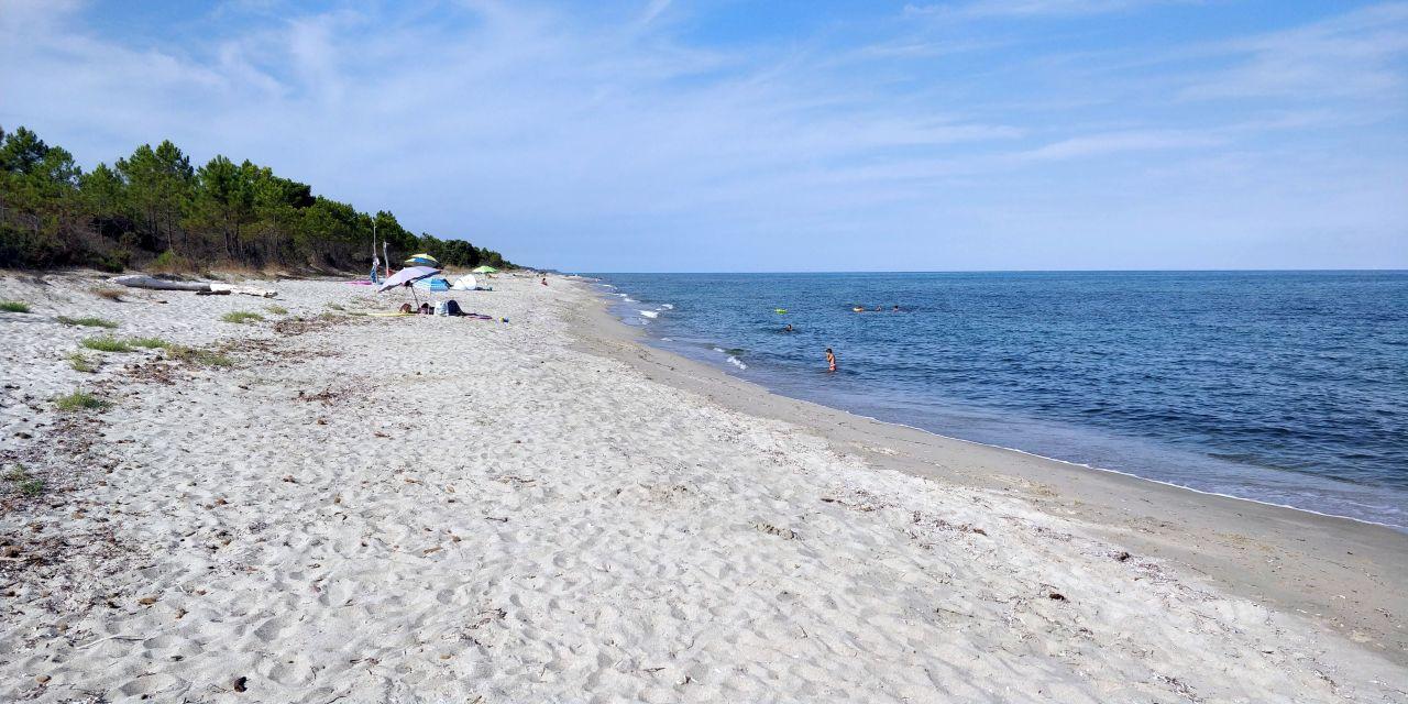 Cet été en Corse, n'oubliez pas les plages de la plaine orientale !