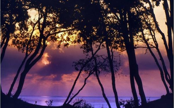 La plage d'Alistro